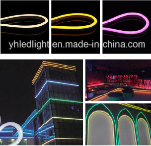 High Brightness SMD2835 Flex Rope Multi-Color R/G/B/Y/W/Ww for Garden/Park Decoration pictures & photos