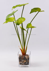 Artificial Decorations Vivid Green Plants with Glass Potted