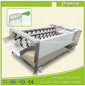 Gl-380 Turnip Washing Machine, Potato Washing Peeling Machine