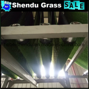Artificial Lawn with 10mm Height 2m or 4m Width pictures & photos