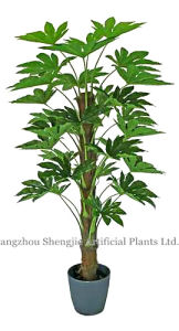 Sj Artificial Fatsia Japonica (green plant for indoor&outdoor decoration)