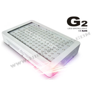 300W LED Grow Light CE RoHS Approved