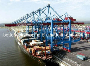 Freight Transport to (Hamburg) Germany From China (Huangpu/ Yantian/ Dongguang/ H.K.)