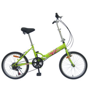 "20"" Chinese 6sp Steel Frame 20f03 Folding Bike"
