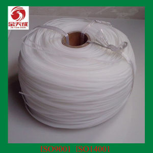 Plastic Welding Filament pictures & photos