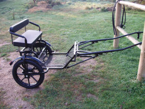 Pony Cart Horse Cart pictures & photos