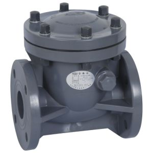 UPVC Swing Check Valve pictures & photos
