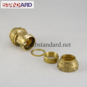 PE Straight Coupling Brass Fitting