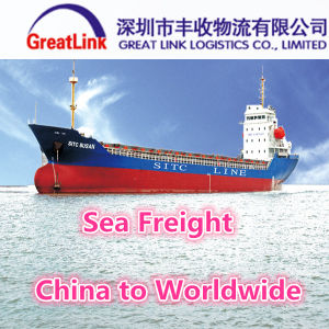 Cheapest Ocean Freight Service From China to Worldwide