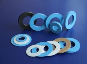 Non Metallic PTFE Gasket with Modification pictures & photos