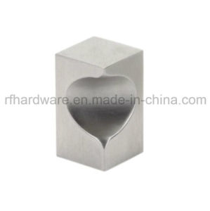 Stainless Steel Cabinet Knob (RK011)