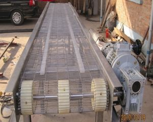 Conveyor Ladder Mesh Belt for Good Grade pictures & photos