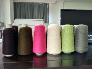 Yak Folded/Decoloration/Dyded/Knitting Yarn pictures & photos