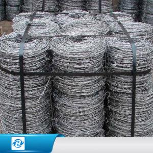 China Hot-Dipped Galvanized Razor Barbed Wire/Barbed Wire Price Per ...