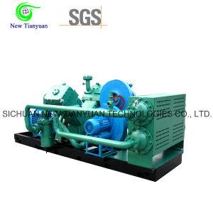 2 2-21MPa Gas Pressure Natural Gas Piston Reciprocating Compressor