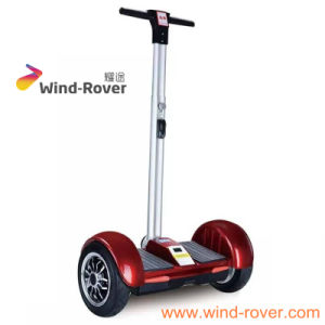 Wind Rover Vivi 10 Inch Electric Skateboard Electrical Toys and Kick Scooter, Surfing Scooter pictures & photos