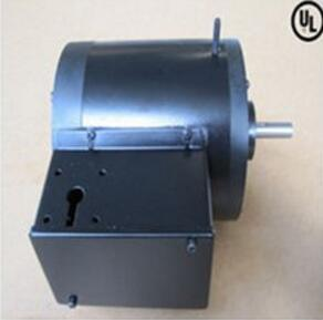 Single-Phase Induction Motor for Segway
