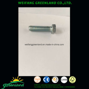 Slotted Sountersunk/Flat Head Wood Screws, Cross Recesed Oval Countersunk Head Wood Screws/Hex Lag Screws/Raised Countersunk Head Tapping Screws with Slot pictures & photos