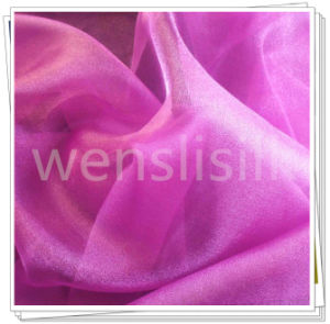 Silk Fabrics with Organza Style (wenslisilk140702S17) pictures & photos