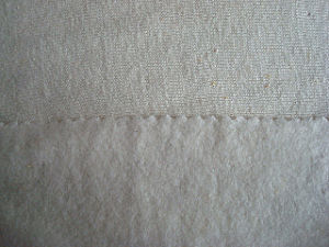 Hemp Viscose Blenched Jersey Knit Fabric pictures & photos