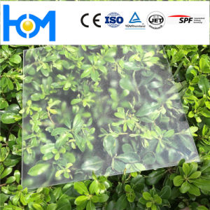 Solar Toughened/ Tempered Sheet Low-Iron Glass PV Module Glass pictures & photos