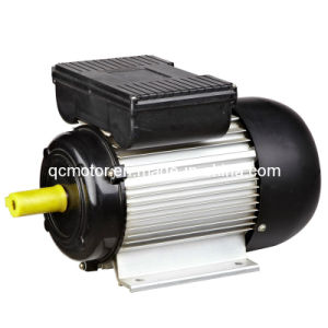 Yl Series Cast Alu Body Copper Wire Cold Sheet Stamping Dual Capacitor Single Phase Induction Motor
