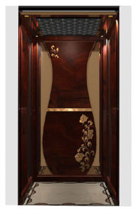 Home Elevator with Classical Decoration pictures & photos