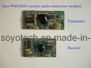 2.4GHz 1: 1 Digital Wireless Audio Transmitter Module pictures & photos
