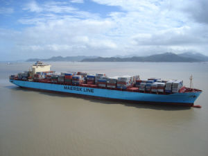 Consolidate Sea Freight & Maersk-Lowest Sea Freight Service