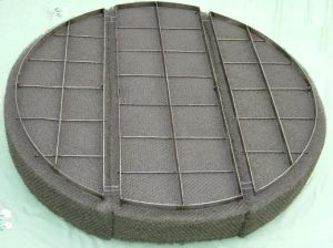 Wire Mesh Demister (stainless steel, SS304, SS316, SS304L, SS316L) pictures & photos