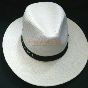 ed6c640e China Custom Design Straw Panama Hat with Printed Ribbon for ...