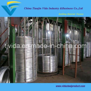 High Quality Gi Wire (BWG4-BWG36) with Excellent Quality