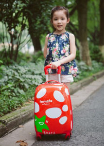 Best Travel Luggage Trolley Baby Luggage Sale