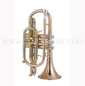 High Grade Cornet (CO-655L) pictures & photos