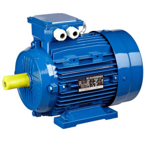 Aluminum Three Phase Motor (MS series)