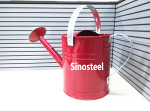 5 Liter Floral Rose Watering Can Metal Self Watering Can pictures & photos