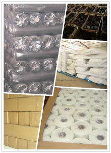 PVC Coated Window/Insect/Mosquito Fiberglass Screening (SGS)