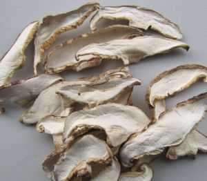 Dried Mushroom Slice Hot Selling Vegetable pictures & photos