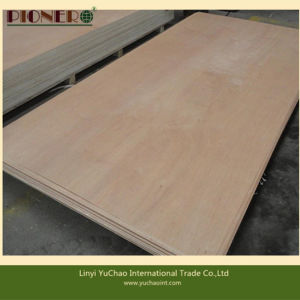 Hot Sale PA/Plb Face Plywood for Algerian Market pictures & photos