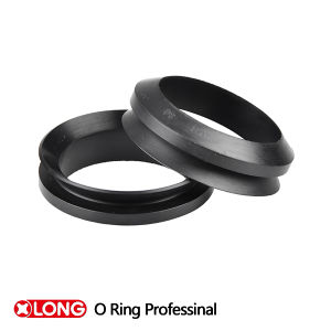 Ts16949 Ve/ Vs V Rings with FKM for Pump pictures & photos