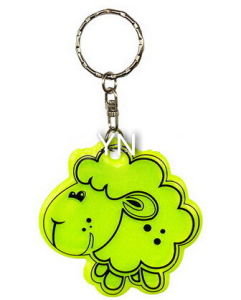 Reflective Key Chain for Safe pictures & photos