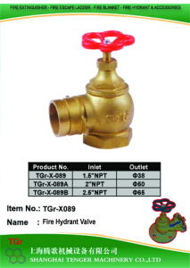 Pressure Reduce Angle Hydrant Valve: NPT-D38/50/65 pictures & photos
