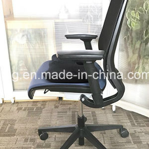Orthopedic Memory Foam Office Chair and Car Seat Cushion