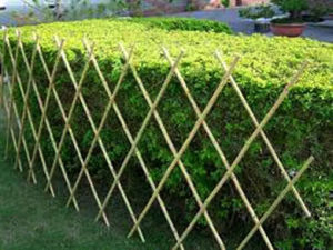 China High Quality and Nature Bamboo Fence/Bamboo Fencing