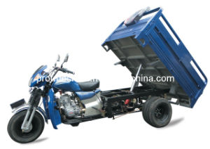 200cc Five Wheel Motorcycle/Cargo Tricycle with Dumping System (TR-8) pictures & photos