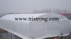 Large Galvanized Trussed Steel Tube Frame PVC Fabric Warehouse (TSU-4966) pictures & photos