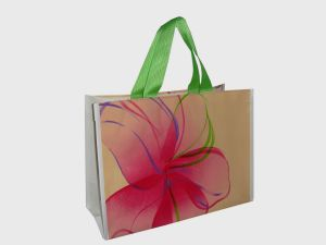 China Factory Cheap Non-Woven Recycled Shopping Bag, Recycled PP Woven Bag