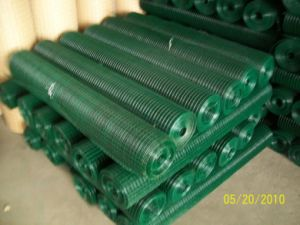 ISO 9001 Welded Wire Mesh pictures & photos