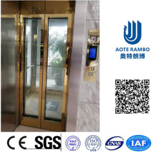 Vvvf Drive Gearless Traction Home Villa Elevator with German Technology