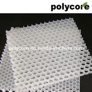 Polypropylene Honeycomb Core (PP8 PP12) pictures & photos